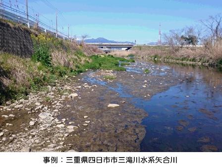 汚染の進んだ川